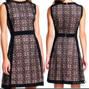 Adrianna Papell New Sheer Medallion Lace Dress